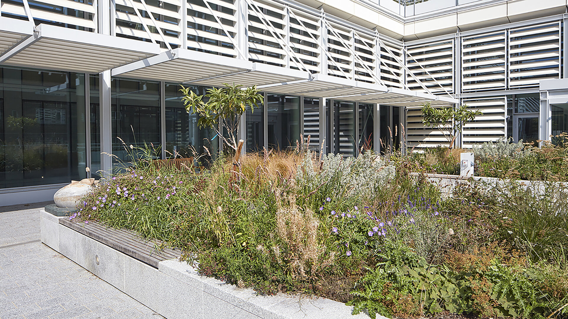 Grafton Way Building wins a British National Landscape Award